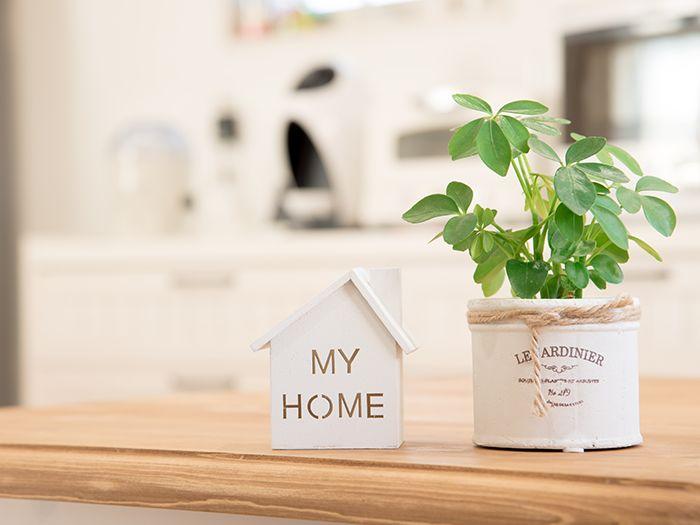 机に置かれた家の模型と観葉植物